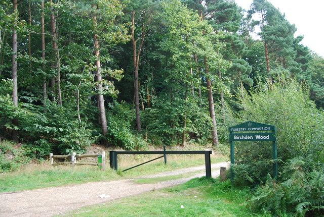 Entrance to Birchden Forest