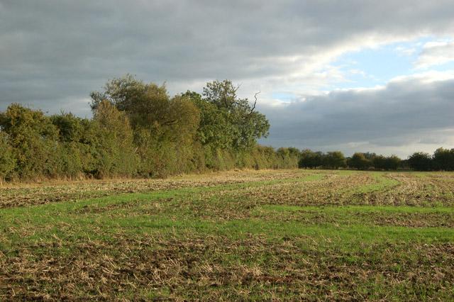 Farmland south of the Hill to Grandborough lane