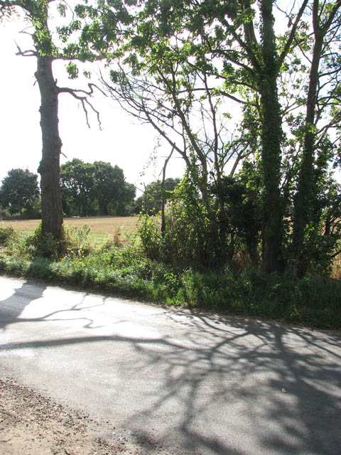 View across Low Road
