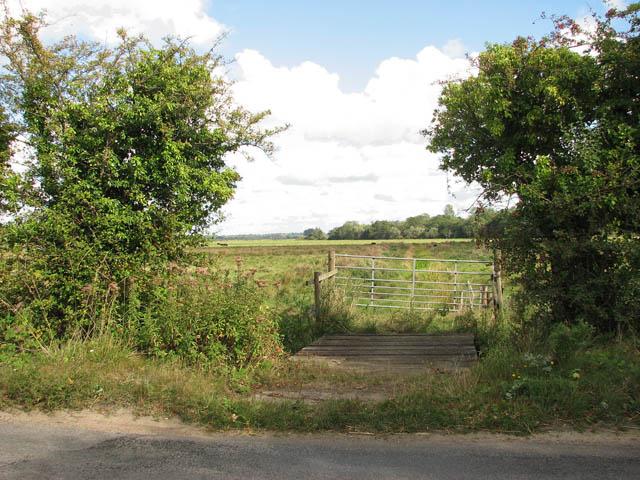 Gate into marsh pasture