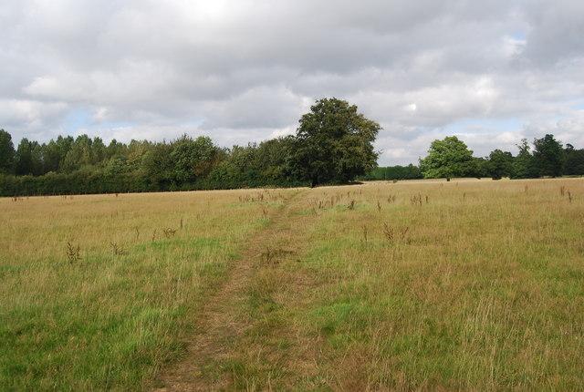 Tunbridge Wells Circular Path - east of Fordcombe Rd