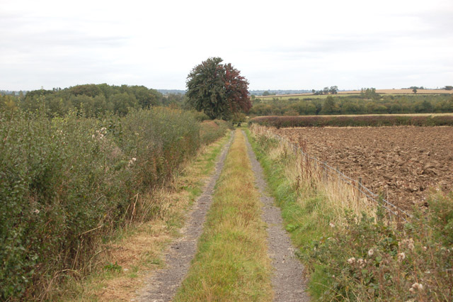 Farm track north of Flecknoe Station Road