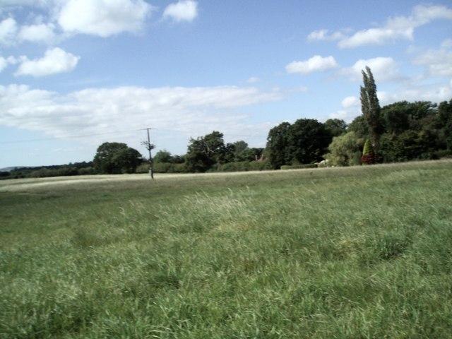 Field near Wilding Farmhouse