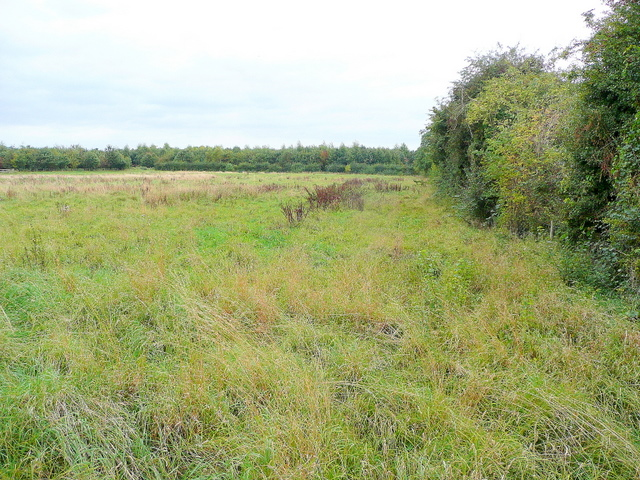 Footpath over rough pasture