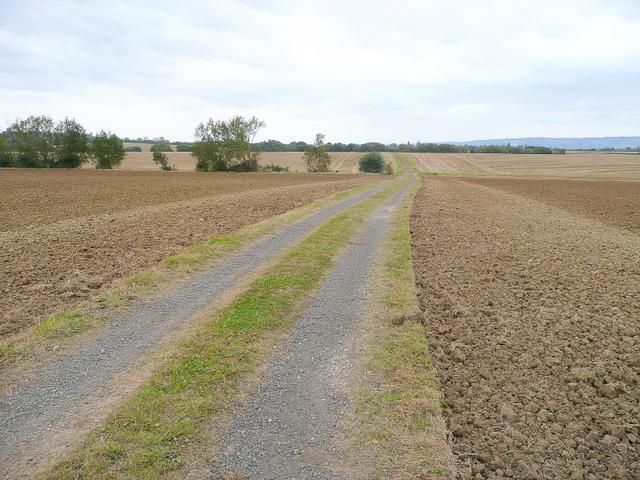 Farm track south of Sedgeberrow