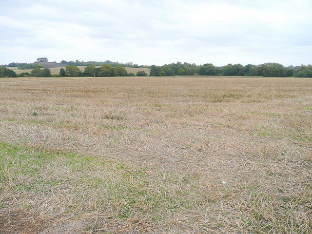 Stubble field in the Isbourne valley