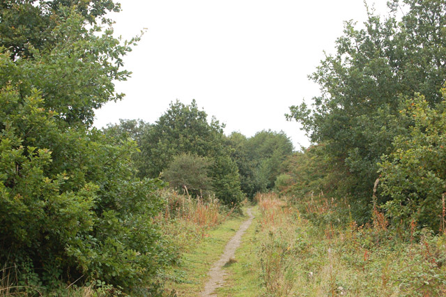 Trackbed of dismantled railway near Cawston (1)