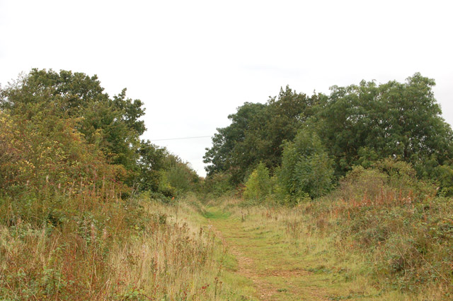 Trackbed of dismantled railway near Cawston  (2)