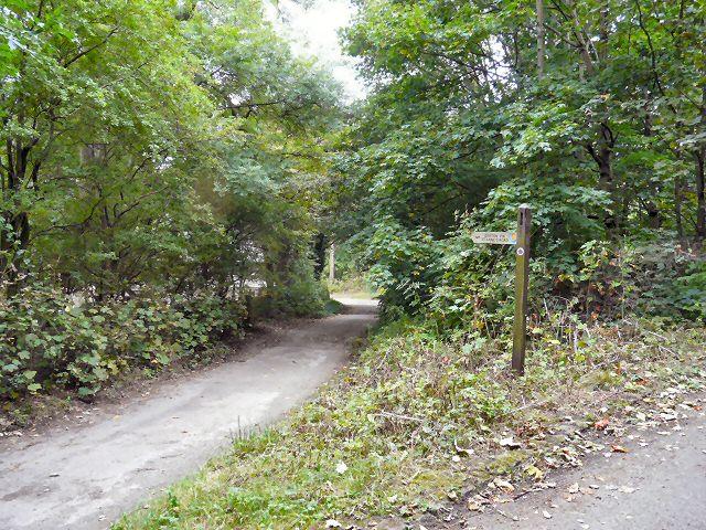 Footpath to Denton