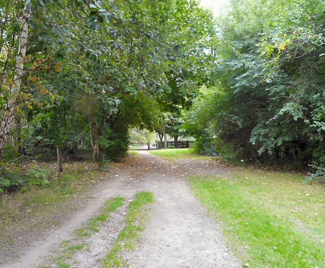 Footpath from Denton
