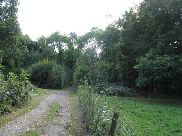 Footpath crossing bridleway near Rapkyns