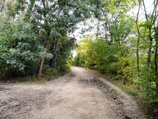 Bridleway to Audenshaw