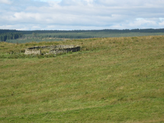 Sheepfold in Northumberland