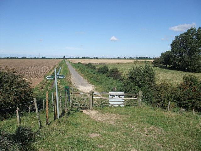 Marsh Road from the sea bank at Kirton Marsh