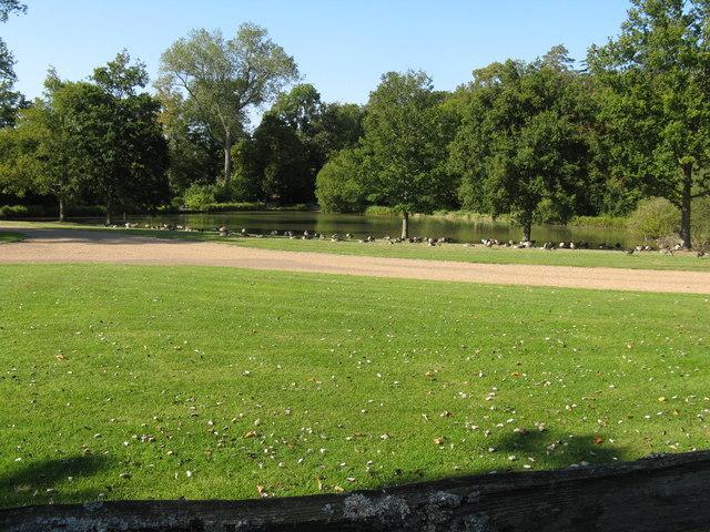Ducks and pond at Warnham Manor