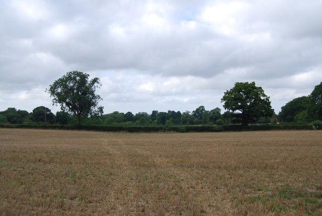 Field south of Legg's Lane