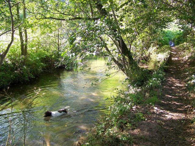 River Nadder, Tisbury