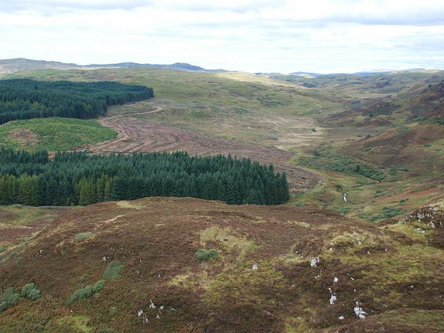 Forestry and the Allt Ath Mhic Mhàirtein