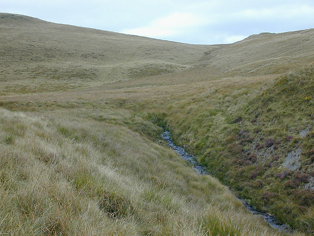 South eastern slopes of Disgwylfa Fawr
