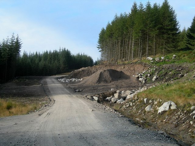 A New Forestry Road