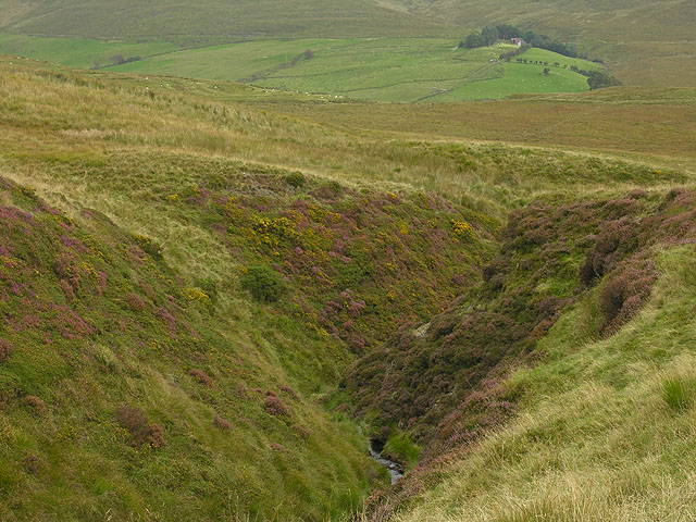 Gorge of the Nant Dinas
