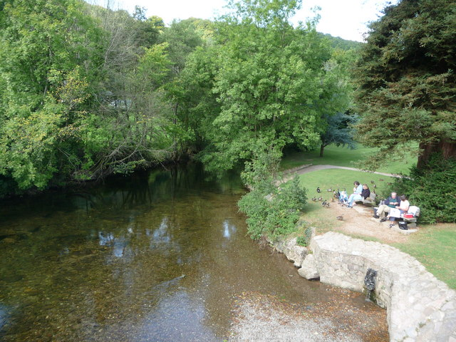 Dulverton : The River Barle & Ducks