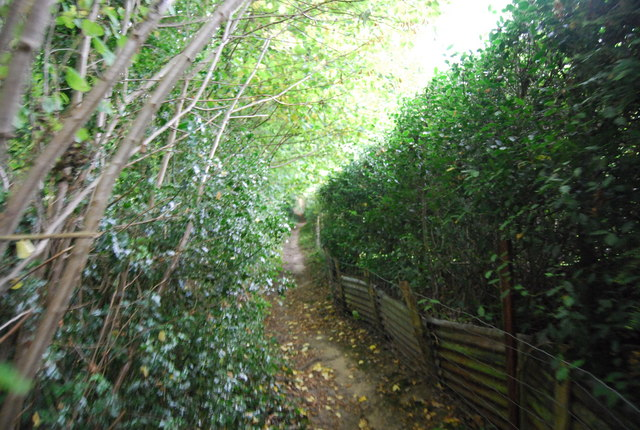 Tunbridge Wells Circular Path  east of the Mill, Speldhurst