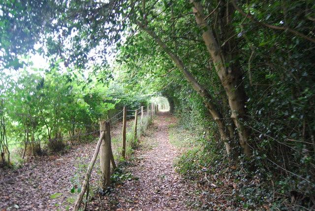 Tunbridge Wells Circular Path - heading to Southborough