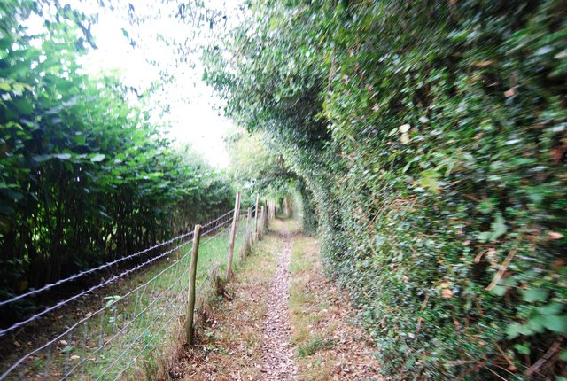 Tunbridge Wells Circular Path - heading to Southborough (2)