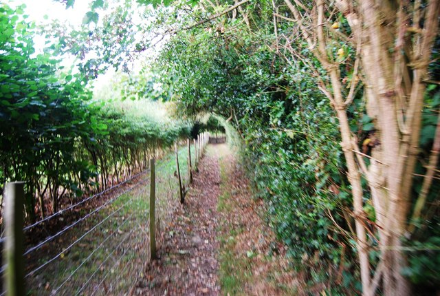 Tunbridge Wells Circular Path - heading to Southborough (3)