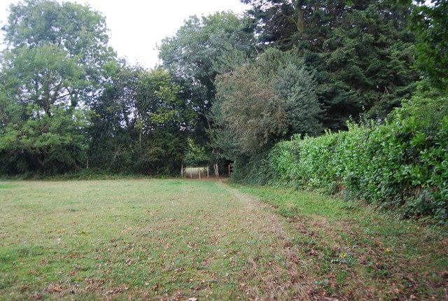 Tunbridge Wells Circular Path - heading to Southborough (5)