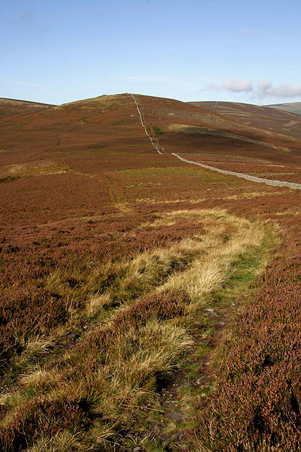 A grass track on Black Law