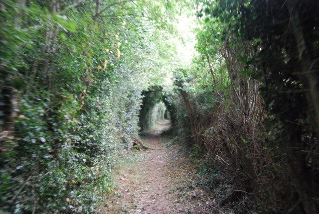 Tunbridge Wells Circular Path - heading to Southborough (7)