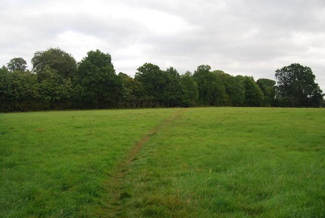 Tunbridge Wells Circular Path - heading to Southborough (8)