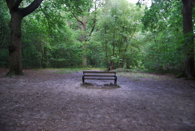 Bench, Southborough Common
