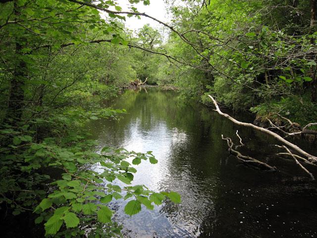 River Nant