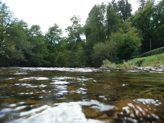 Dulverton : The River Barle