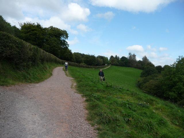 Exmoor : Tarr Steps Path & Hillside