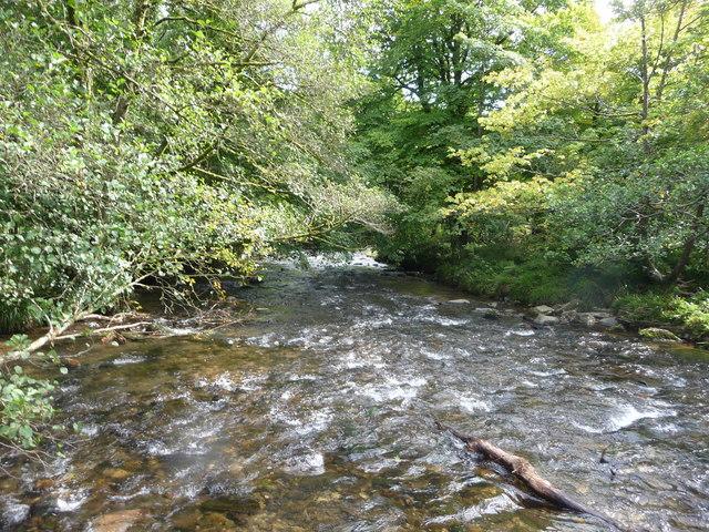 Exmoor : The River Barle