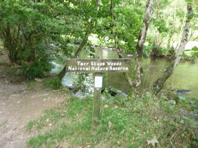 Exmoor : Tarr Steps Woods Sign