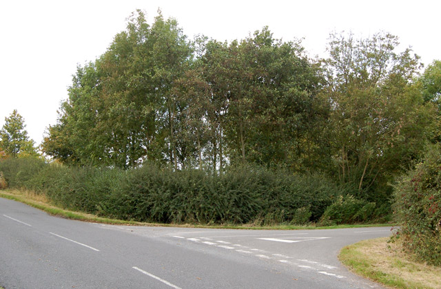 Road junction near Woolscott