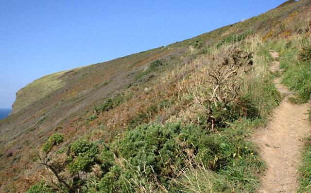 Climbing the Headland