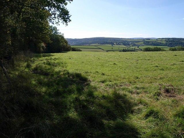 Field by Hask Lane