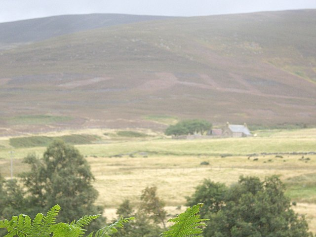 View towards Auchabrack