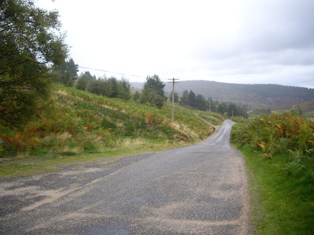 Road through Forest of Birse by Burnfoot