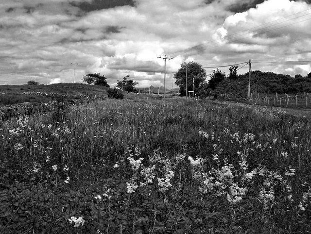 Lismore road edge