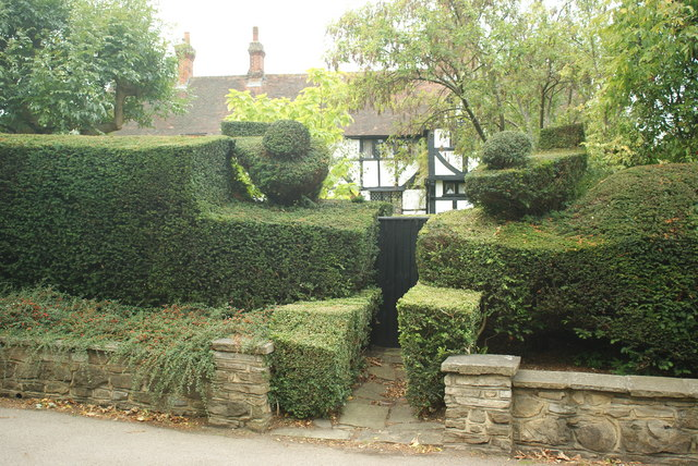 Topiary at West Clandon