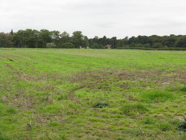 Edge Of The Tatton Estate