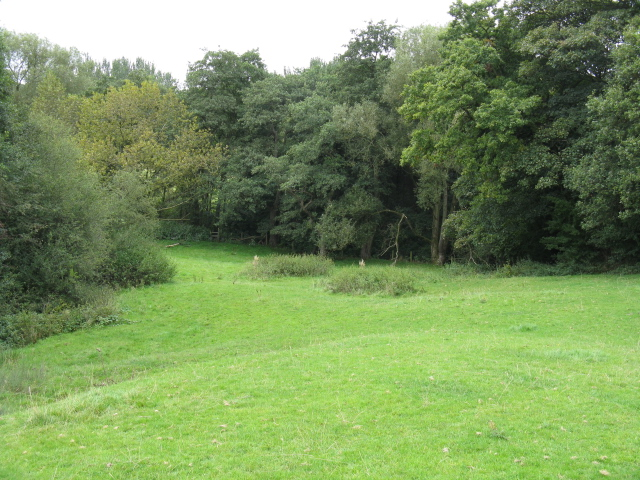 Birkin Brook At The Tatton Park Boundary