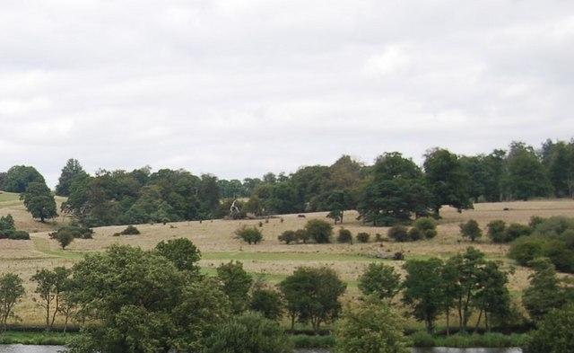 Eridge Park